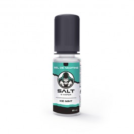 Ice Mint 10ml Salt E-Vapor by Le French Liquide