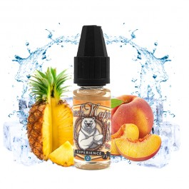 Concentré PeachNapple 10ml Arctic Bear by Ladybug (10 pièces)