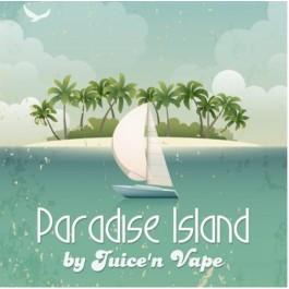 Concentré Paradise Island Juice'n Vape (10 pièces)