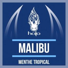 Concentré Malibu 10ml Halo (10 pièces)
